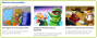 Club Penguin: Novedades para Socios, 06 Marzo2014